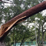 火災保険の請求期限はいつまで?台風・風災の時効は3年まで