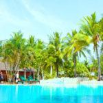 リゾート会員権を経費計上し、法人節税は可能か